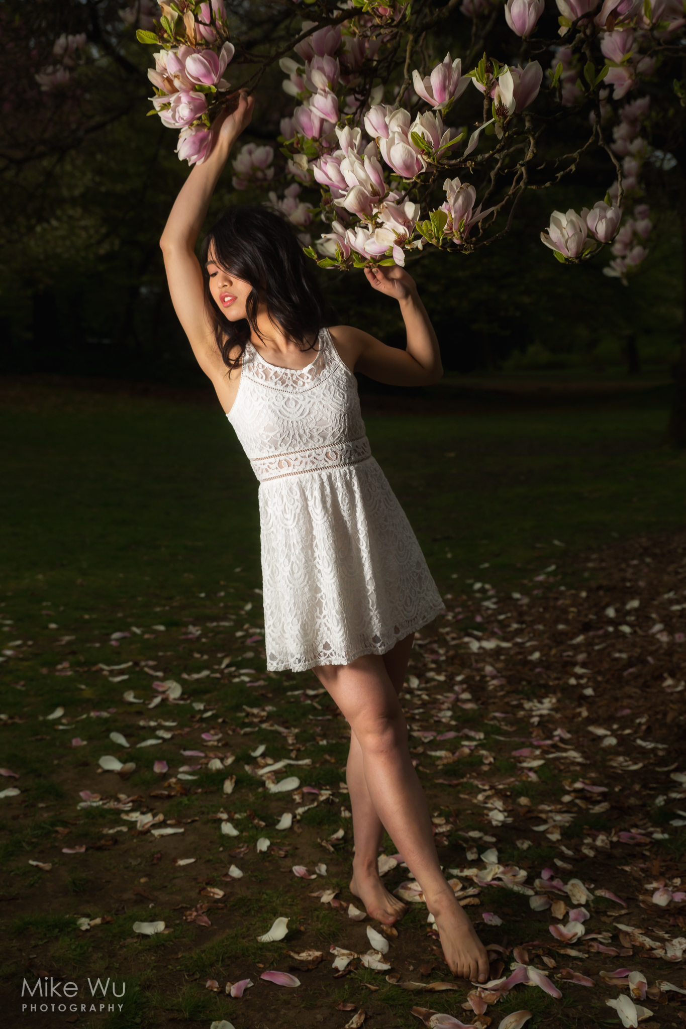 flowers, white dress, hss, park, vancouver, beauty, graceful, elegant, spring, blossom, bloom, outdoors, vancouver, queen elizabeth park
