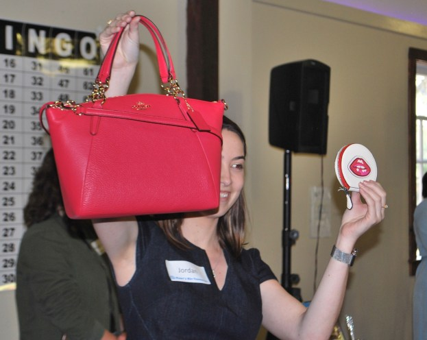 Handbag Bingo 2018