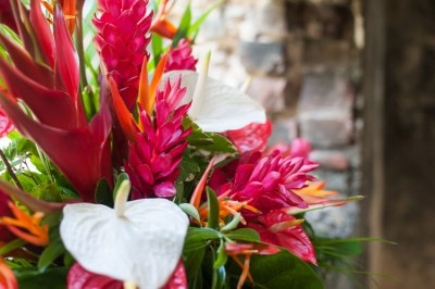 St. Lucia Wedding Photographer • Destination Wedding ...