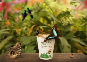 Puro Fairtrade økologisk kaffe, te og kakao