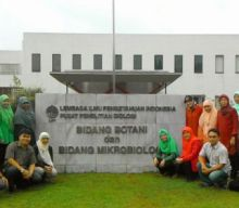 "Pelatihan ""Molecular Identification and Phylogenetic Analysis"""