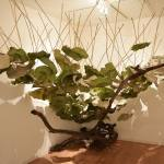 lotos-leaves-ikebana-large interior-decor