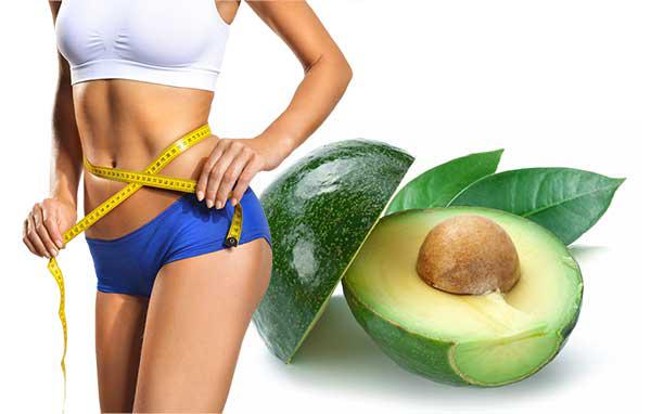 Fat Burning Fingerprint weight loss diet program