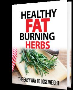 EZ Flat Belly PDF