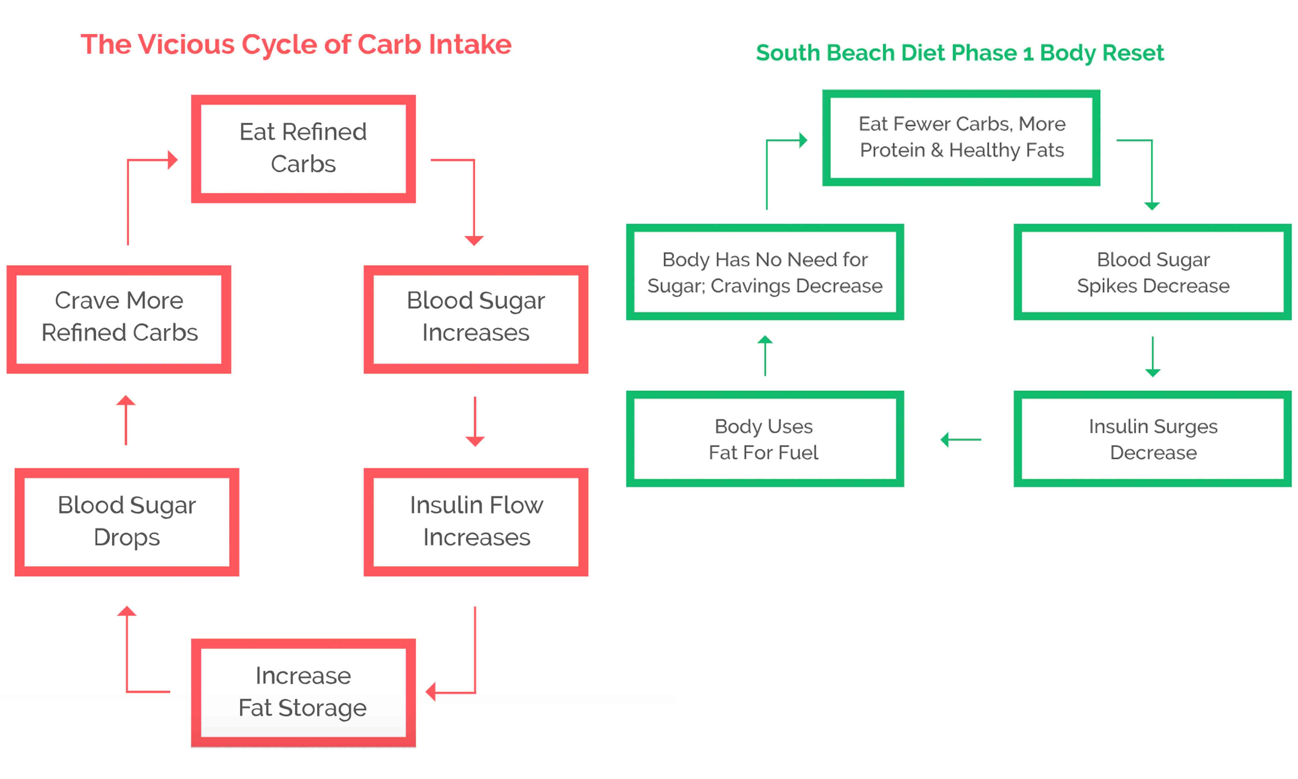 South Beach Diet Real Reviews