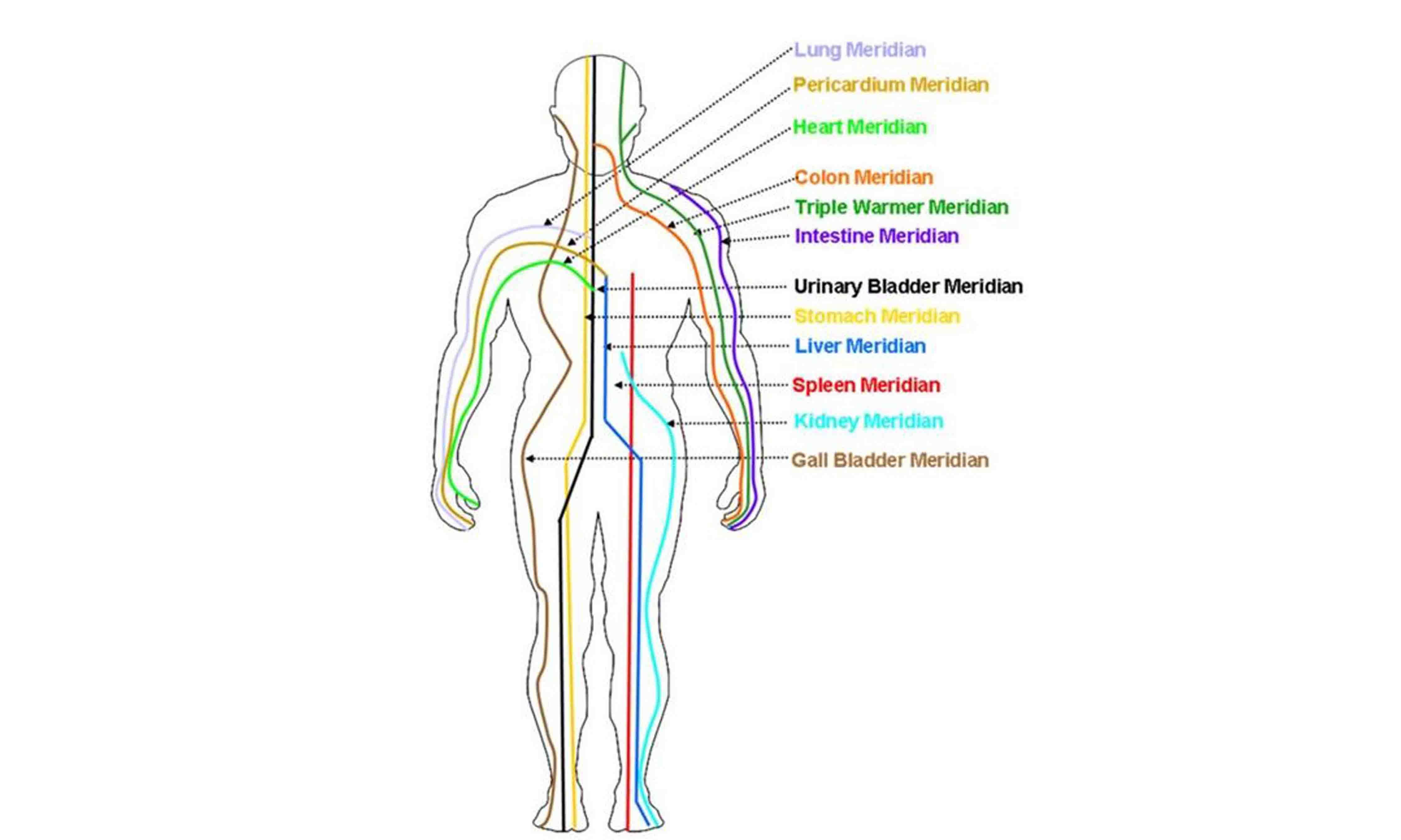 Meridian Health Protocol Reviews
