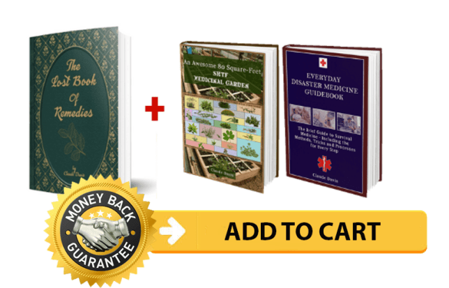 The Lost Book of Remedies ebook