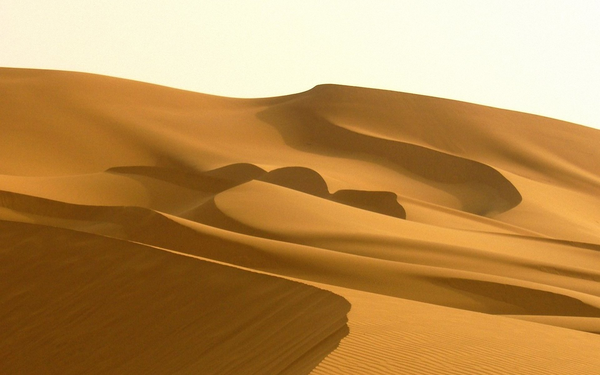 sahara-wallpaper_103191-1920×1200