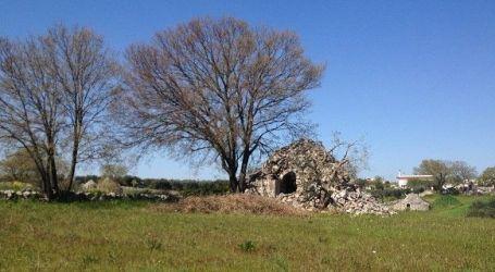 Volti di Puglia. Natura, storia, arte e gastronomia