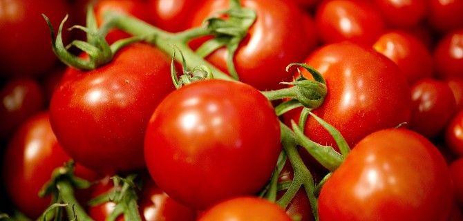 Il pomodoro, protagonista della dieta mediterranea