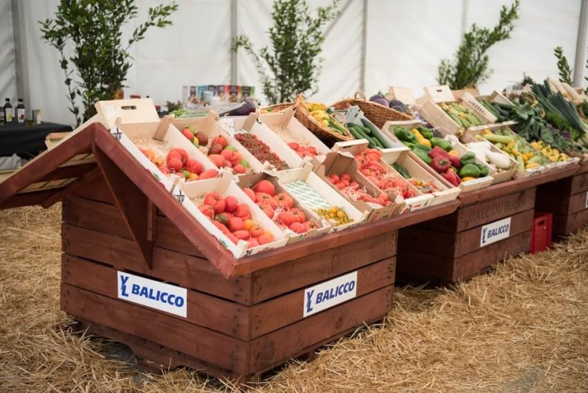 Durante il festival è stato allestito anche un vero e proprio mercato provenzale