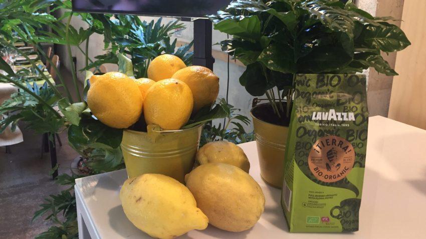 Lavazza Bio-Organic