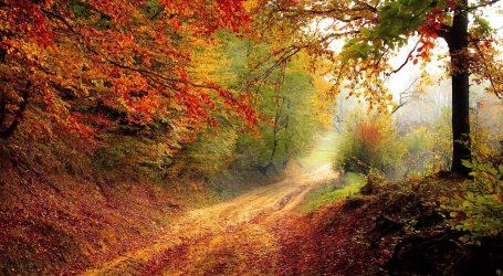 Il foliage, quando la natura in autunno regala uno spettacolo da non perdere