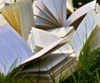 Book Pride Link 2020: tutte le novità