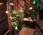 Heineken presenta Beer Garden, 'giardino' per beer lover