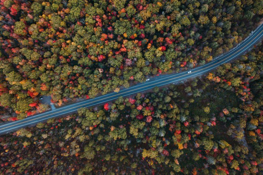 La strada che taglia la Minnewaska State Park Preserve in Catskills