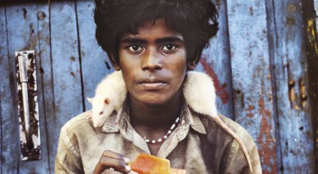 Steve McCurry inaugura Mudec Photo con Animals