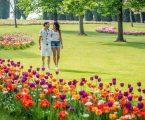 Parco Giardino Sigurtà, momenti felici in un posto magico