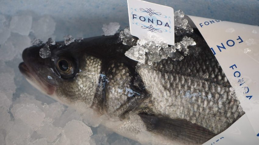 Fish Fonda Farm in Slovenia