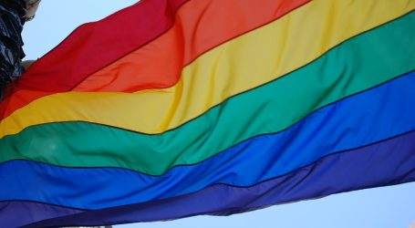 Global Pride, il Gay Pride si fa online