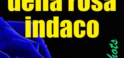 Il mistero della rosa indaco di Francesca Rizzuto