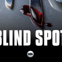 Blind spot - Andrea Novelli, Gianpaolo Zarini
