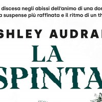 La spinta - Ashley Audrain