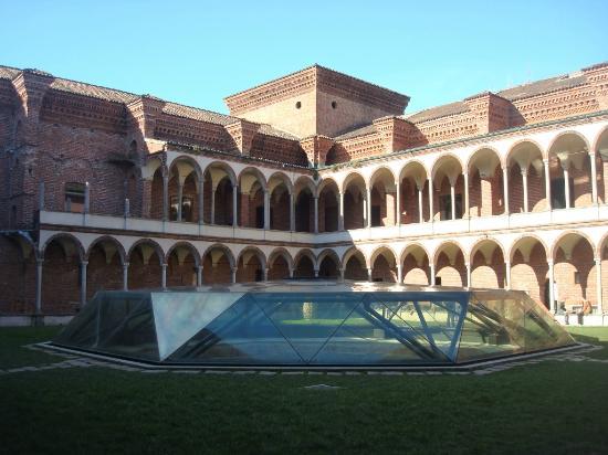 Миланский Университет. Ледник во дворе