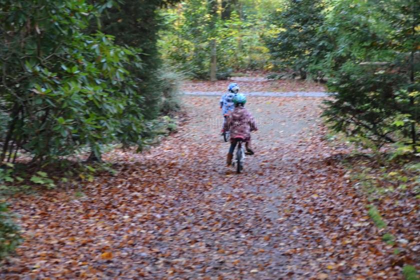 WIB #kw45 Dreijaehrige alleine auf BMW Kidsbike