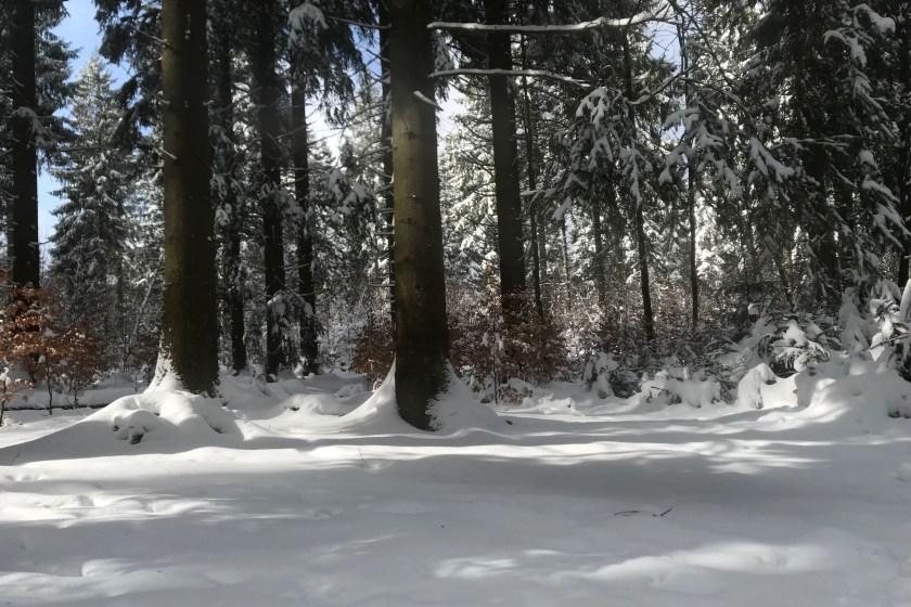 Winterberg Neuschnee Familienurlaub Bericht