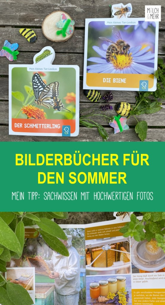 Bilderbuch Biene Schmetterling