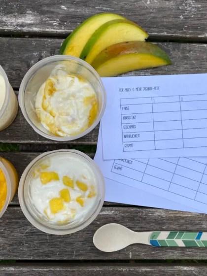 Joghurt Alternativen fuer Kinder