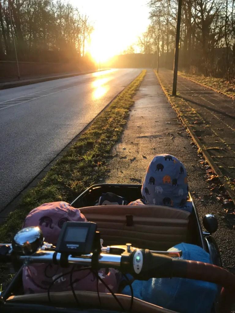 Lastenrad Kleinkinder Lebensqualitaet