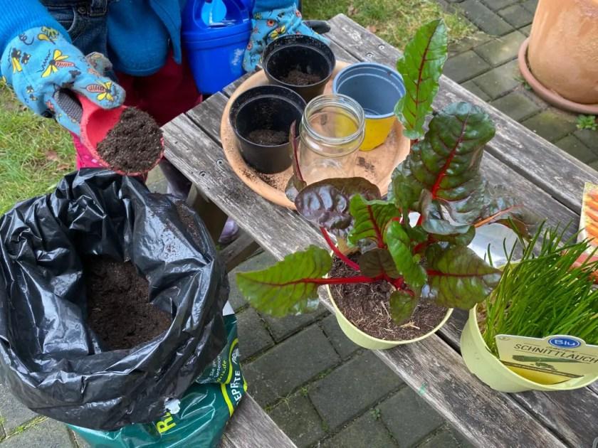 Gartenprojekt fuer Kinder