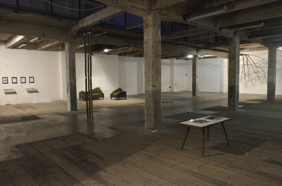 Homescape, 2012, exhibition view