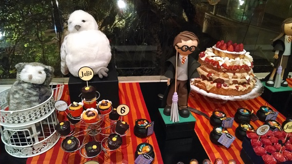festa harry potter 10