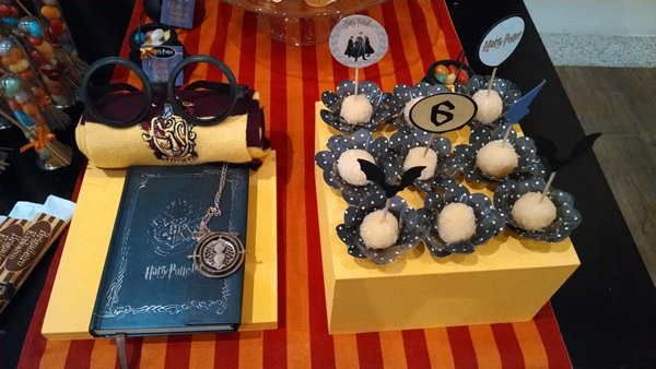 festa harry potter 11