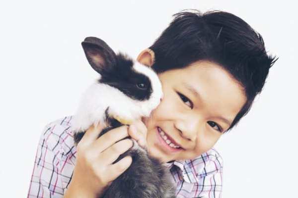 criança com coelho nos braços