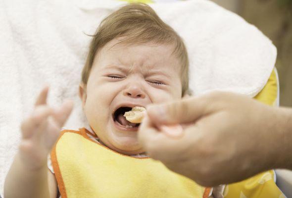 bebê pronto para introdução alimentar1