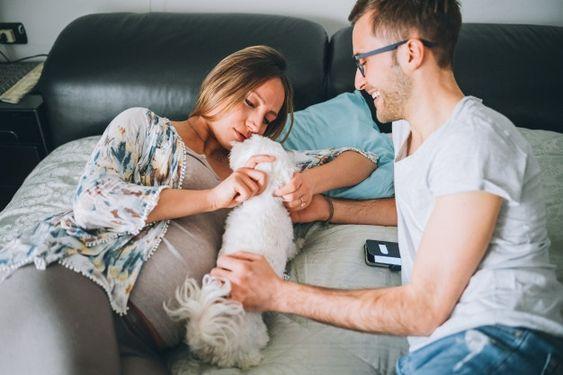 fotos de gestante com cachorro