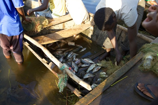 Fishermen at Lake Hawassa, Ethiopia