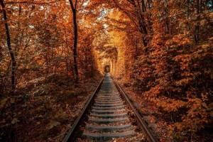 treno del foliage percorso