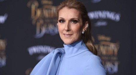 Celine Dion donates Vegas show proceeds as she returns after 'nightmare' shooting
