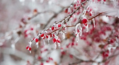 Potential ice storm' coming to southern Ontario this weekend