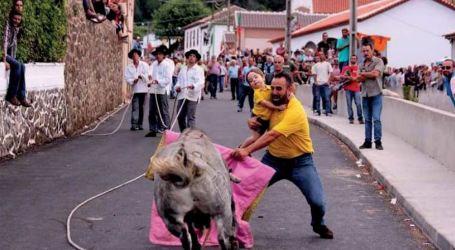 Homem a tourear com criança ao colo provoca repúdio internacional
