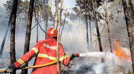 Falsos fogos mobilizam centenas de bombeiros