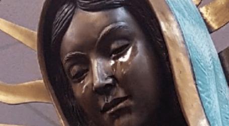 """Estátua de Nossa Senhora """"a chorar"""" atrai crentes de todo o mundo"""