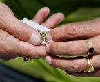 """Lei de legalização da canábis para uso recreativo """"chumbada"""""""