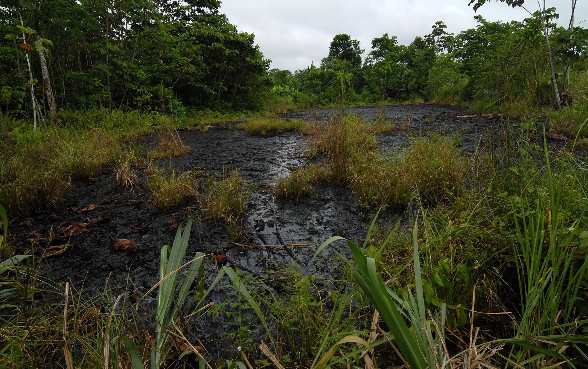 Piscina de aguas de formación no remediada por texaco  en las zona de Nueva Loja Sucumbios