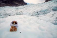 Ed, Ed is back, Fox Glacier, Reisemaskottchen, Stofftier, Reise, Heli Hike, Gletschertour, Gletscherwanderung, Hubschrauber, Tour, Eis, blau, kalt